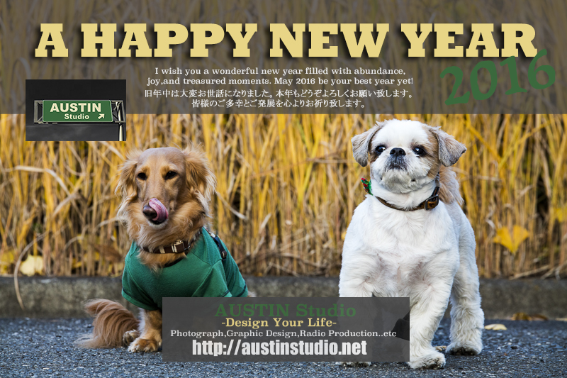 AUSTIN Studio 2016 new year card