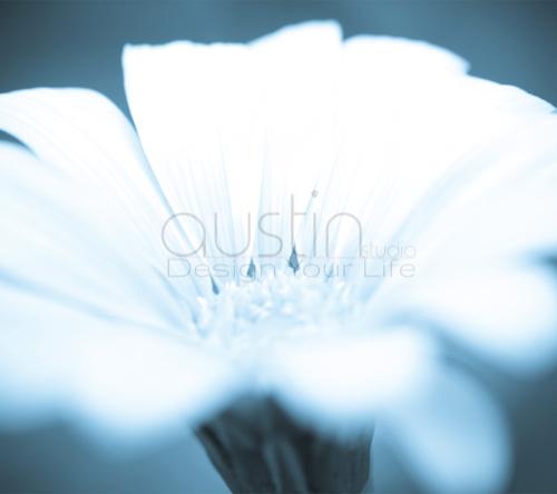 flower - 2160x1920 (2)sample